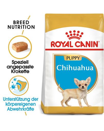 ROYAL CANIN Chihuahua Puppy Welpenfutter trocken 1,5 kg