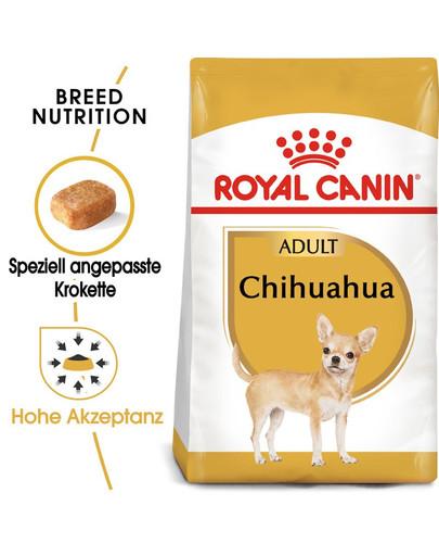 ROYAL CANIN Chihuahua Adult Hundefutter trocken 500 g