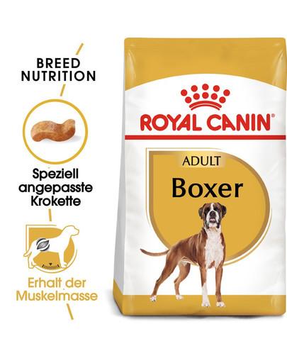 ROYAL CANIN Boxer Adult Hundefutter trocken 12 kg 4420