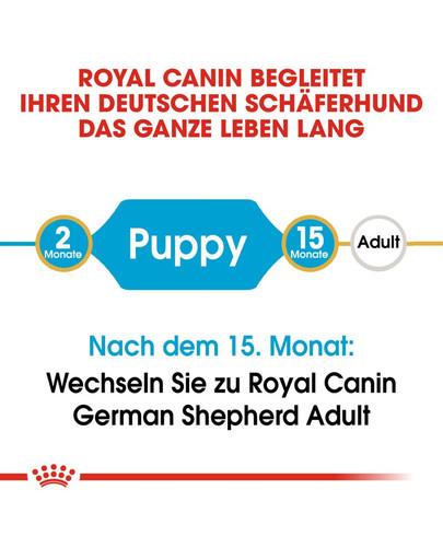 ROYAL CANIN German Shepherd Puppy Welpenfutter trocken für Deutsche Schäferhunde 1 kg