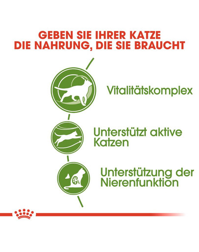 ROYAL CANIN OUTDOOR 7+ Katzenfutter trocken für ältere Freigänger 2 kg