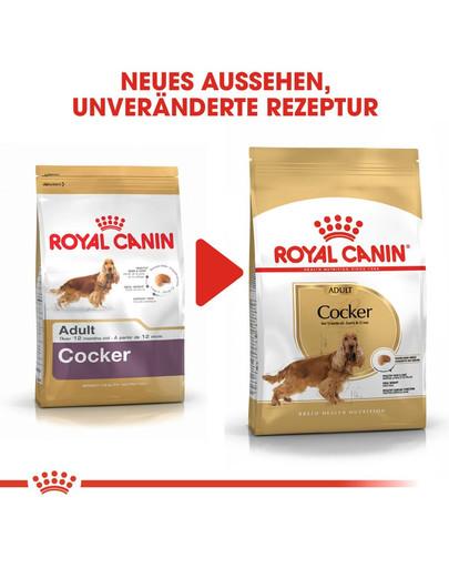 ROYAL CANIN Cocker Adult Hundefutter trocken 3 kg