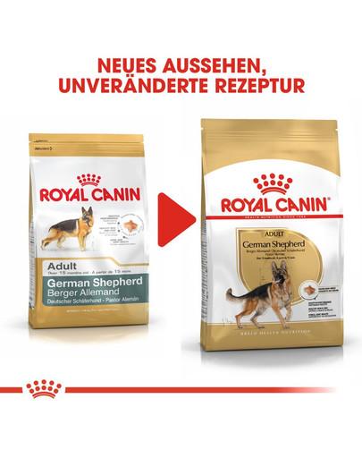 ROYAL CANIN German Shepherd Adult Hundefutter trocken für Deutsche Schäferhunde 3 kg