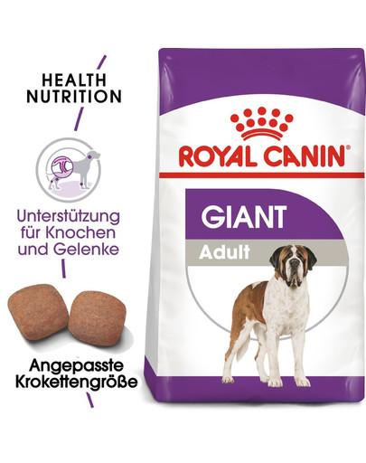 ROYAL CANIN GIANT Adult Trockenfutter für sehr große Hunde 15 kg
