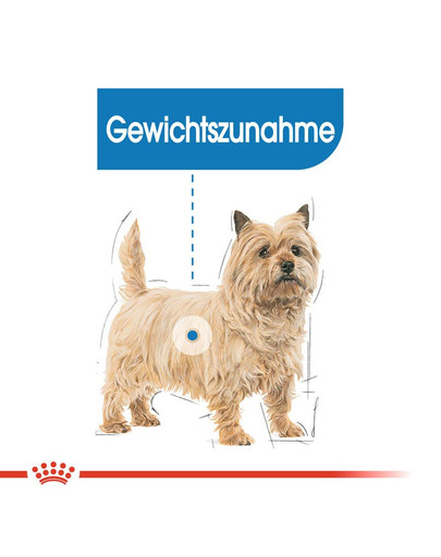 ROYAL CANIN LIGHT WEIGHT CARE MINI Trockenfutter für kleine Hunde mit Neigung zu Übergewicht 8 kg