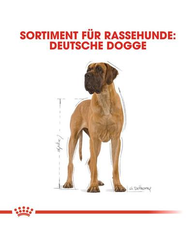 ROYAL CANIN Great Dane Adult Hundefutter trocken für Deutsche Doggen 12 kg