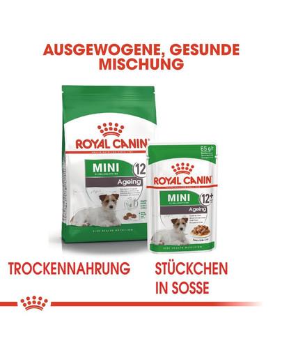 ROYAL CANIN MINI Ageing 12+ Trockenfutter für ältere kleine Hunde 3,5 kg