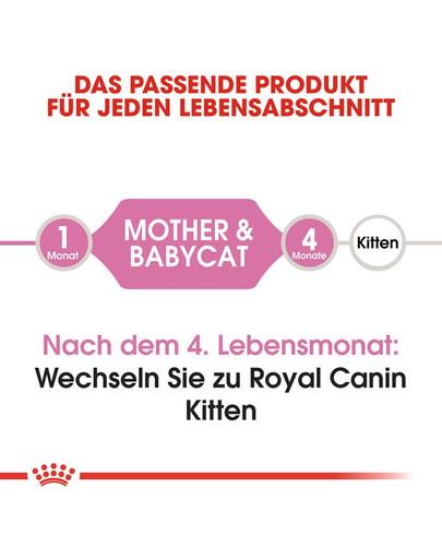 ROYAL CANIN MOTHER & BABYCAT Katzenfutter für tragende Katzen und Kitten 400 g