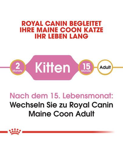 ROYAL CANIN Maine Coon Kittenfutter trocken für Kätzchen 400 g