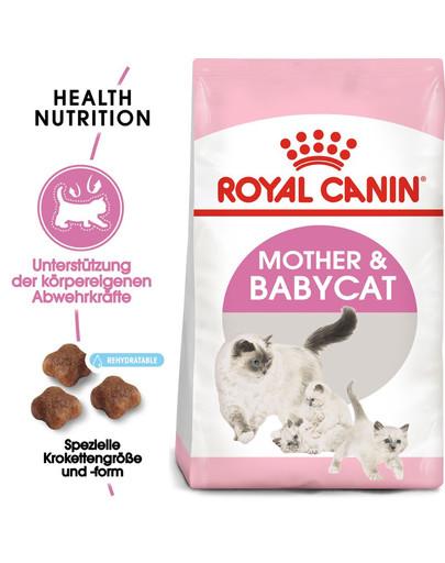 ROYAL CANIN MOTHER & BABYCAT Katzenfutter für tragende Katzen und Kitten 4 kg