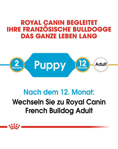 ROYAL CANIN French Bulldog Puppy Welpenfutter trocken für Französische Bulldoggen 10 kg