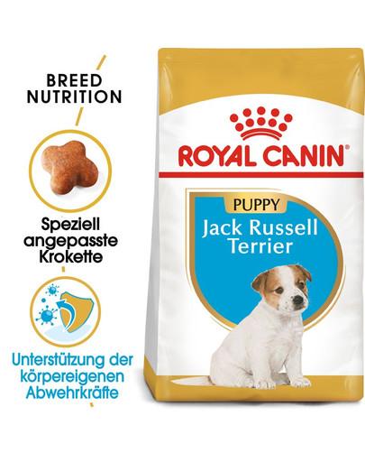 ROYAL CANIN Jack Russell Terrier Puppy Welpenfutter trocken 1,5 kg