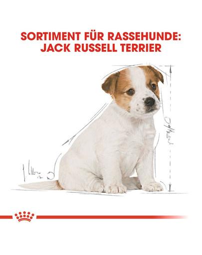 ROYAL CANIN Jack Russell Terrier Puppy Welpenfutter trocken 3 kg
