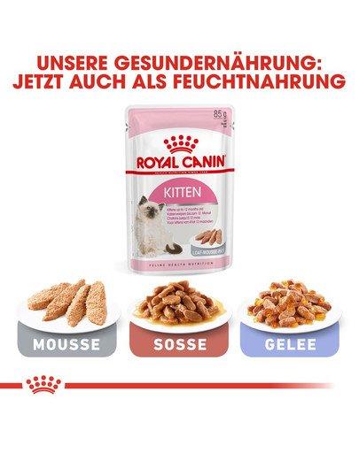 ROYAL CANIN KITTEN Trockenfutter für Kätzchen 10 kg