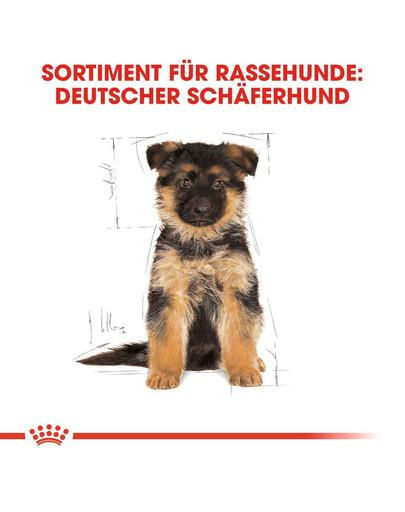 ROYAL CANIN German Shepherd Puppy Welpenfutter trocken für Deutsche Schäferhunde 12 kg