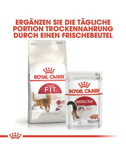 ROYAL CANIN FIT Trockenfutter für aktive Katzen 4 kg