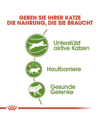 ROYAL CANIN OUTDOOR Katzenfutter trocken für Freigänger 2 kg
