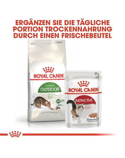 ROYAL CANIN OUTDOOR Katzenfutter trocken für Freigänger 400 g