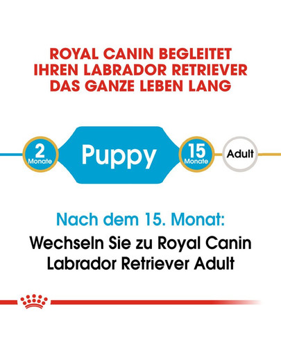 ROYAL CANIN Labrador Retriever Puppy Welpenfutter trocken 1 kg