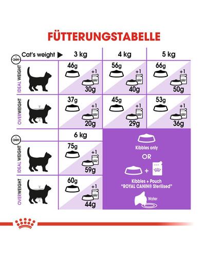 ROYAL CANIN STERILISED 7+ Trockenfutter für ältere kastrierte Katzen 3,5 kg