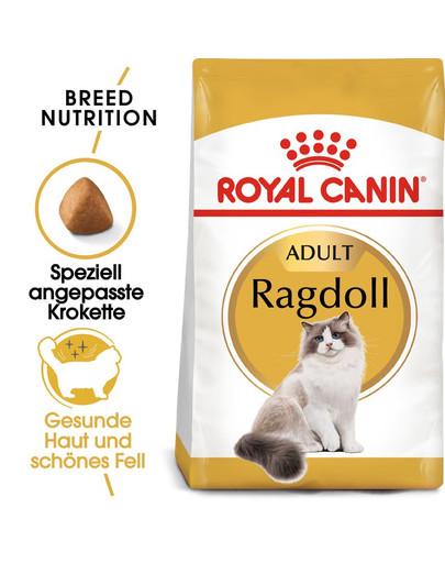 ROYAL CANIN Ragdoll Adult Katzenfutter trocken 2 kg 9981