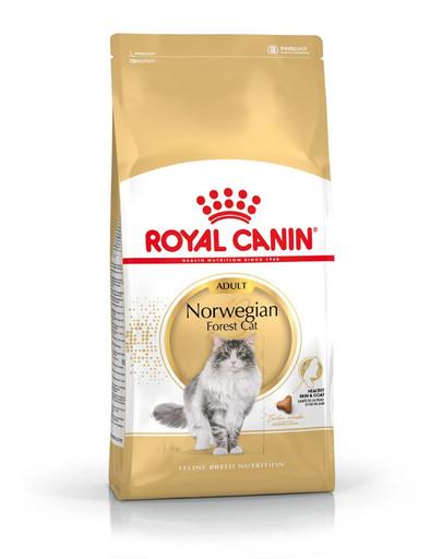 ROYAL CANIN Norwegian Forest Cat Adult Trockenfutter für Norwegische Waldkatzen 10 kg