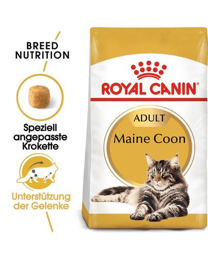 ROYAL CANIN Maine Coon Adult Katzenfutter trocken 10 kg + 2 kg Gratis! 4560