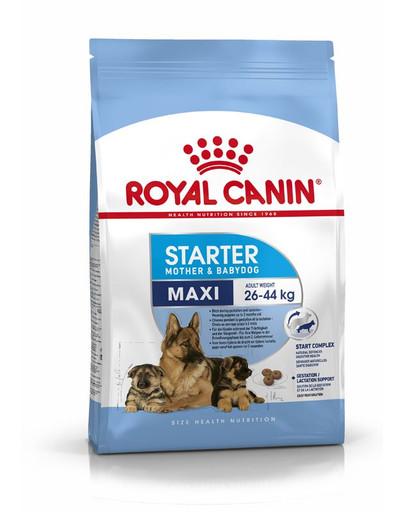 ROYAL CANIN MAXI Starter für tragende Hündin und Welpen 15 kg