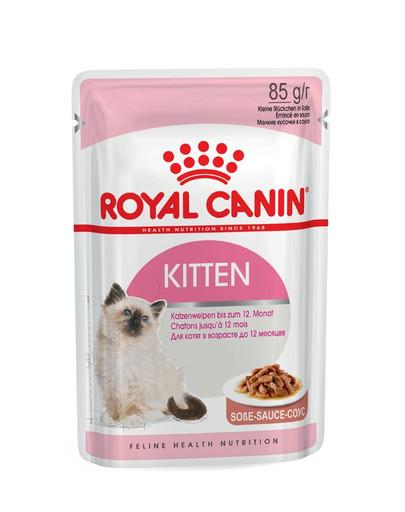 ROYAL CANIN KITTEN Nassfutter in Soße für Kätzchen 12x85g
