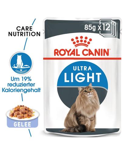 ROYAL CANIN Ultra Light Nassfutter in Gelee für übergewichtige Katzen 85 g