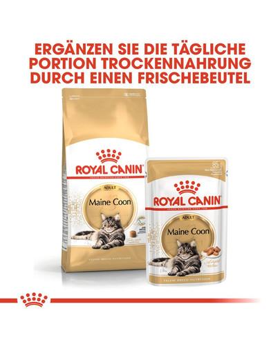 ROYAL CANIN Maine Coon Adult Katzenfutter trocken 10 kg + 2 kg Gratis!