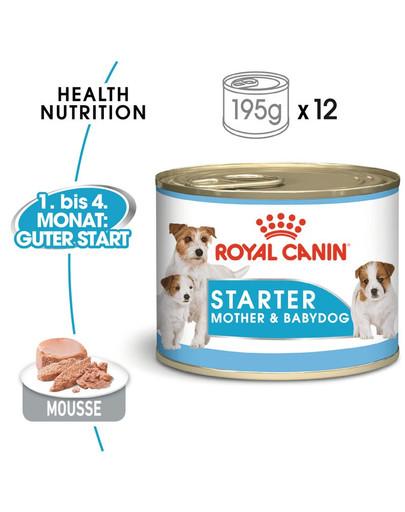 ROYAL CANIN STARTER Mousse Welpenfutter nass 195 g
