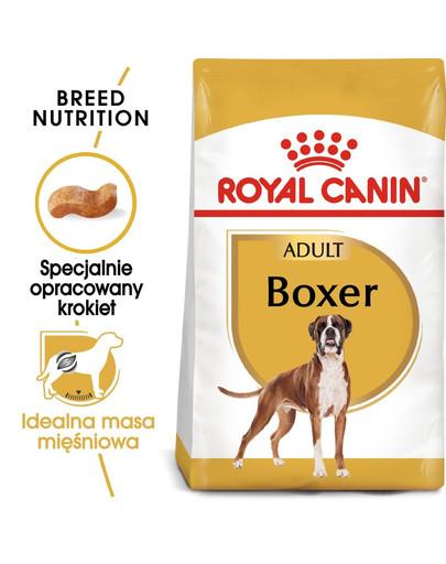 ROYAL CANIN Boxer Adult Hundefutter trocken 3 kg 51697