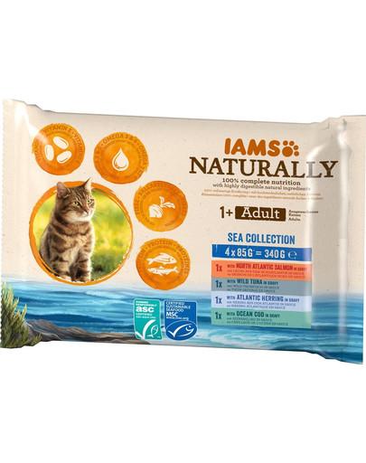 IAMS Naturally für ausgewachsene Katzen 4 x 85 g 54102