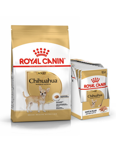 ROYAL CANIN Chihuahua Adult Hundefutter trocken 3 kg + Chihuahua nass in Soße 12 x 85 g 54774