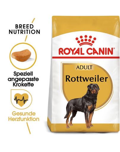 ROYAL CANIN Rottweiler Adult Hundefutter trocken 24 kg (2 x 12kg) 55015