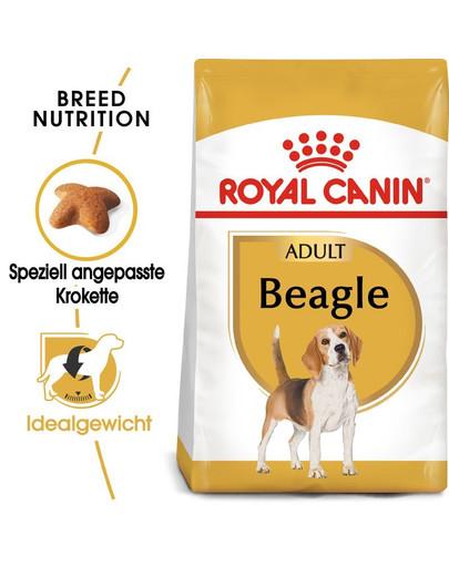 ROYAL CANIN Beagle Adult Hundefutter trocken 24 kg (2 x 12 kg) 54790