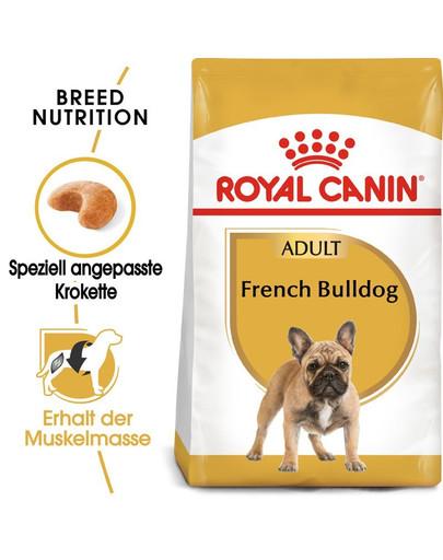 ROYAL CANIN French Bulldog Adult Hundefutter trocken für Französische Bulldoggen 18 kg (2 x 9 kg) 54959