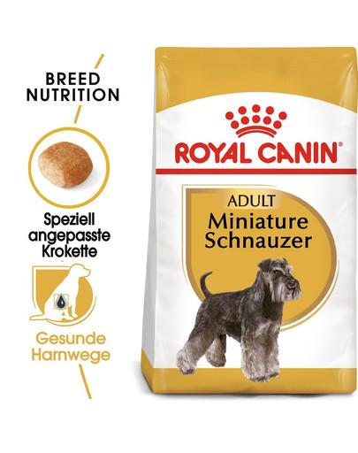 ROYAL CANIN Miniature Schnauzer Adult Hundefutter trocken für Zwergschnauzer 15 kg (2 x 7.5 kg) 55004