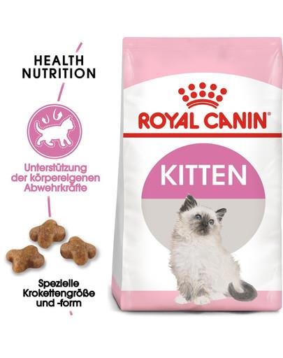 ROYAL CANIN KITTEN Trockenfutter für Kätzchen 20 kg (2 x 10 kg) 54983